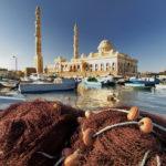 Hurghada, halászkikötő és halpiac