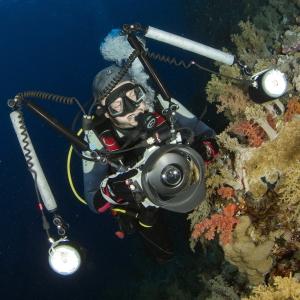 Fefe underwater foto © Demjan 1x1