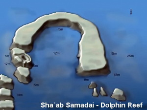 Sha´ab Samadai -Dolphin Reef 3